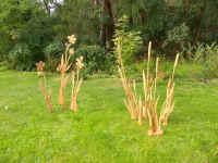 Blumen und Schilfdolden - Geschenkideen - Kunstwerke von Siegfried K�mmel